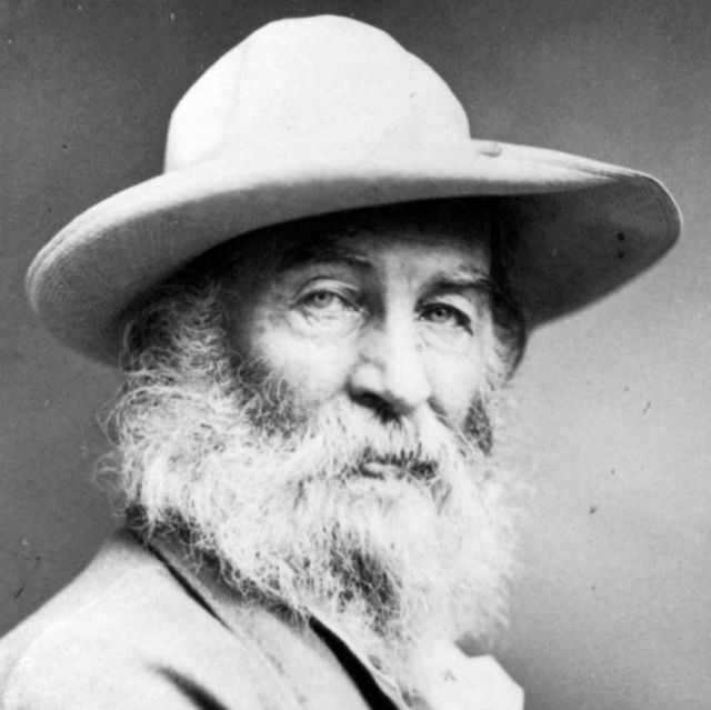 Walt-Whitman-leaves-of-grass-grashalmen[1]