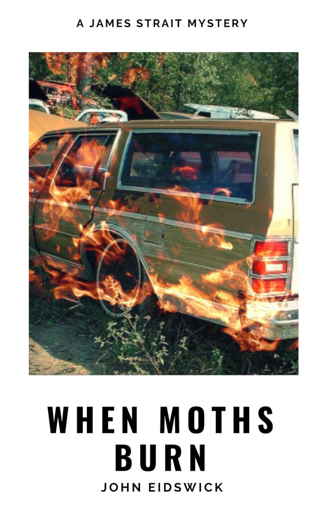 When moths burn Book cover draft 3